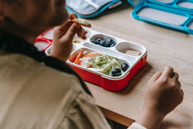 kids prepared lunch box